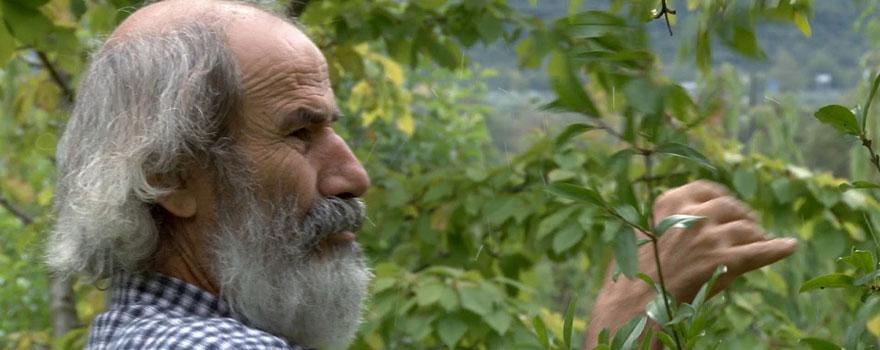 αγρόκτημα, ραντεβού Δίδυμοι αρσενικό dating δίδυμο θηλυκό