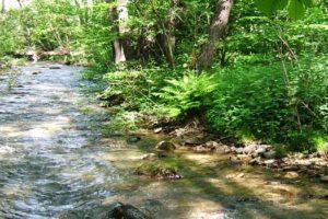 Ποταμός Σακουλέβας Φλώρινας