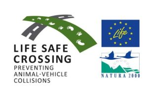 life safe crossing λογότυπο