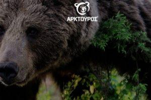Κέντρο περίθαλψης και φιλοξενίας ειδών άγριας πανίδας