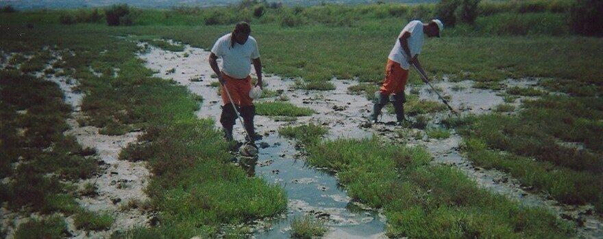 Έργο Καταπολέμησης Κουνουπιών Περιφέρειας Δυτικής Μακεδονίας 2020-2022 - 6